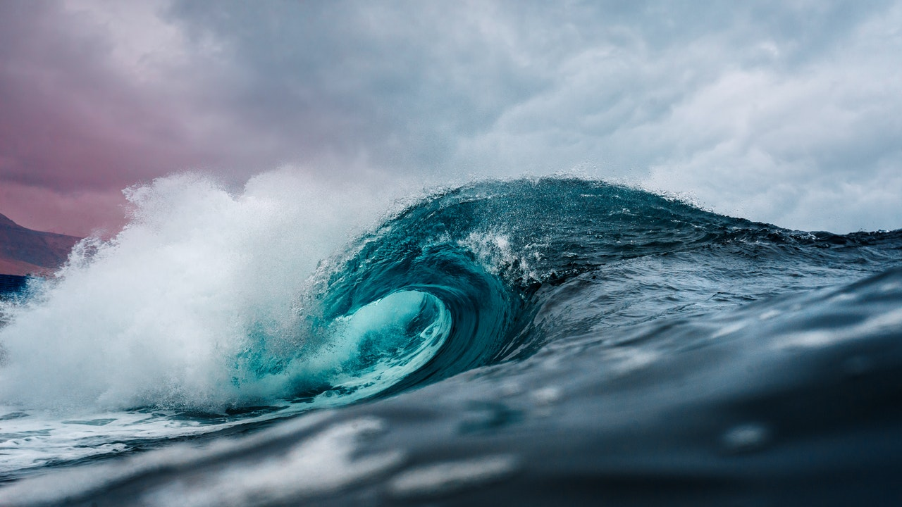 What is Your Wave in Life and How to Flow with It?